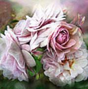 Miracle Of A Rose - Mauve Art Print