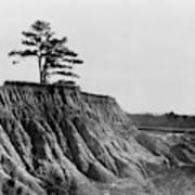 Mississippi Erosion, 1936 Art Print
