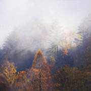 Mist In Mountains Art Print by Dorothy Walker