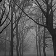 Mist In The Park Art Print