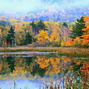 Misty Autumn Pond  Art Print