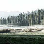 Misty Morning In Yosemite Art Print