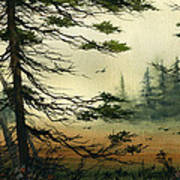 Misty Tideland Forest Art Print by James Williamson