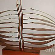 Mitotic Spindle Art Print