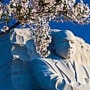 Mlk Memorial Framed By Cherry Blossoms Art Print