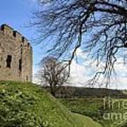 Moated Castle Art Print