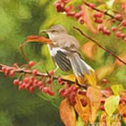 Mockingbird And Berries Art Print