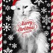 Mod Cards - I'm A Star Baby I'm A Christmas Star - Merry Christmas Art Print