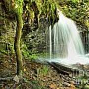 Mohawk Falls At Ricketts Glen Art Print