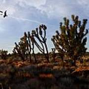 Mojave Desert Joshua Tree With Ravens Art Print
