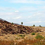 Mojave Desert Landscape Art Print