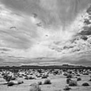 Mojave National Preserve Art Print