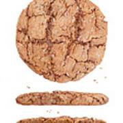 Molasses Cookie Art Print