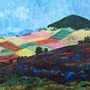 Mole Hill Patchwork - Sold Art Print