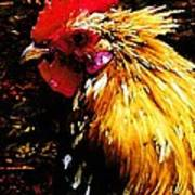 Cock Fighter Art Print