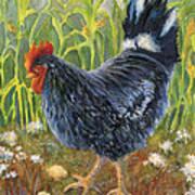 Mom And Chicks Art Print