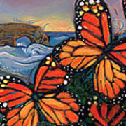 Monarch Butterflies At Natural Bridges Art Print by Jen Norton