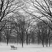 Monarch Park Ground Fog Art Print