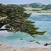 Monastery Beach Art Print