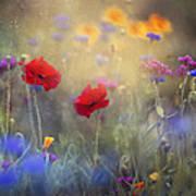 Monet's Garden I Art Print