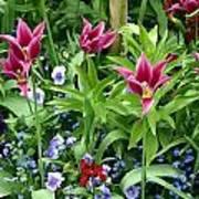 Monets Garden Art Print
