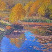 Monets Pond. Whitechapple Art Print