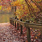 Monet's Trail Art Print by Debra and Dave Vanderlaan