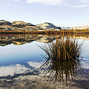 Montana Reflections Art Print by Dana Moyer