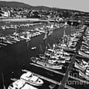 Monterey Marina With Fishing Boats In Slips Sept. 4 1961  Art Print