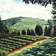 Monticello Vegetable Garden Art Print