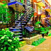 Montreal Staircases Verdun Stairs Duplex Flower Gardens Summer City Scenes Carole Spandau Art Print