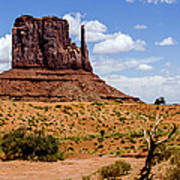 Monument Valley - Elephant Butte Art Print