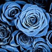 Moody Blue Rose Bouquet Art Print