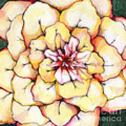 Moon Flower Out Of The Bloomers And Onto The Bloom Art Print