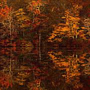 Moonlight Autumn Art Print