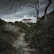 Moonlight Farm Art Print