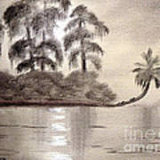 Moonlight Wakulla Springs Art Print