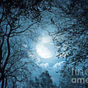 Moonlight With Forest Print by Boon Mee
