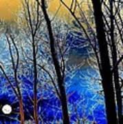 Moonlit Frosty Limbs Art Print