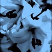 Moonlit Lilies Art Print