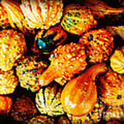 More Beautiful Gourds - Heralds Of Fall Art Print