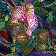 More Orchids Art Print by Doris Wood