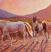 More Than Light Arizona Sunset And Wild Horses Art Print