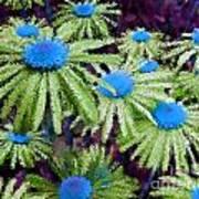 More Than Miles Purple Green Blue Art Print