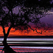 Moreton Bay View Art Print