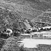 Mormon Emigrant Conestoga Caravan 1879 - To Utah Art Print
