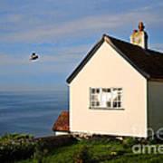 Morning Cottage At Lyme Regis Art Print