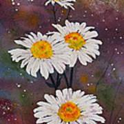 Morning Daisies Art Print