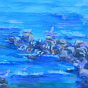 Morning Gulls Art Print