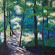 Morning Sunshine In Park Forest Art Print